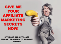 How to do Affiliate Marketing: 3 Things All Affiliate Marketers Need To Survive Online