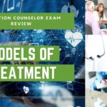 Models of Treatment for Addiction | Addiction Counselor Training Series